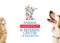 Animal Emergency & Referral Center of Minnesota, cats, dogs, Minnesota emergency vet, emergency veterinarian, Twin Cities emergency veterinarian, Saint Paul emergency veterinarian, veterinary, pet health, pet emergency
