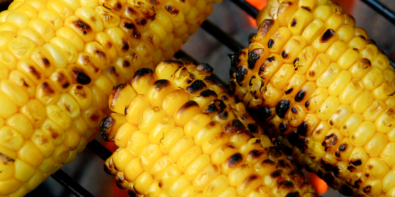 corn on the cob, grilling, grilling safety, grilling tips, pet owners, pet safety, grilling safety for dog owners, grilling safety for pet owners, summer grilling, veterinary medicine, emergency vet, Animal Emergency & Referral Center of Minnesota
