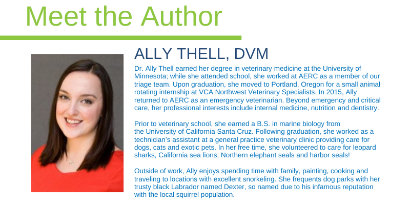 Ally Thell, DVM, emergency veterinarian, Animal Emergency & Referral Center of Minnesota
