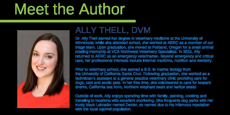 Ally Thell, DVM, emergency veterinarian, Animal Emergency & Referral Center of Minnesota