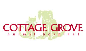 Awe Inspiring Cottage Grove Animal Hospital Animal Emergency Referral Download Free Architecture Designs Rallybritishbridgeorg
