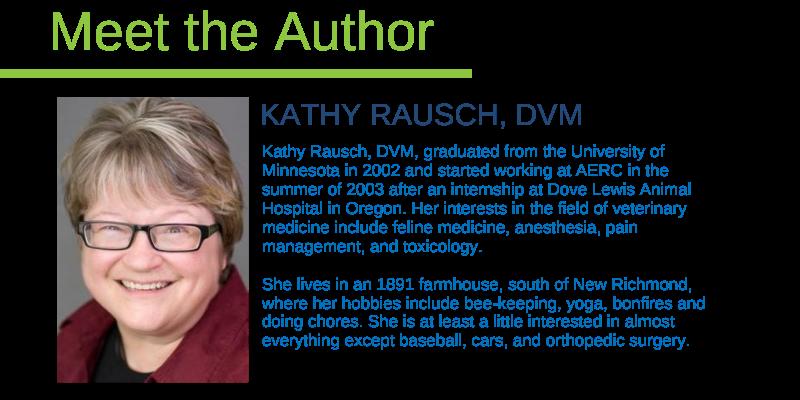 Dr. Rausch, emergency vet, er vet, Animal Emergency & Referral Center of Minnesota