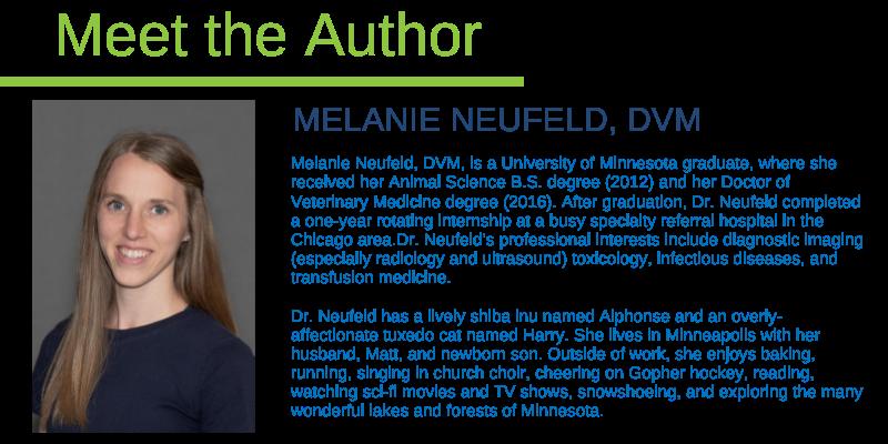Melanie Neufeld, DVM, Animal Emergency & Referral Center of Minnesota