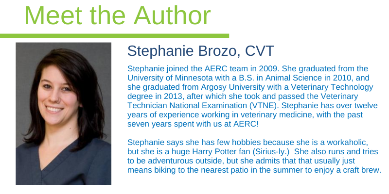 veterinary technician, meet the author, Stephanie Brozo