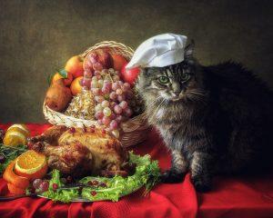 5 Thanksgiving Pet Dangers