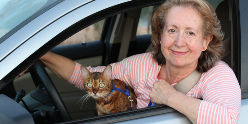 woman, cat, curbside services, shop local, support local, locally-owned veterinary clinic, family veterinarian, family vet, Minnesota veterinary clinics, Minnesota animal hospital, Twin Cities veterinary clinics, Saint Paul veterinary clinics, veterinary care, pets, pet owners, support local veterinarians