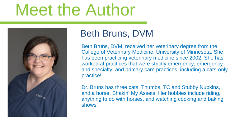 Dr. Bruns, ER vet, emergency veterinarian, Animal Emergency & Referral Center of Minnesota