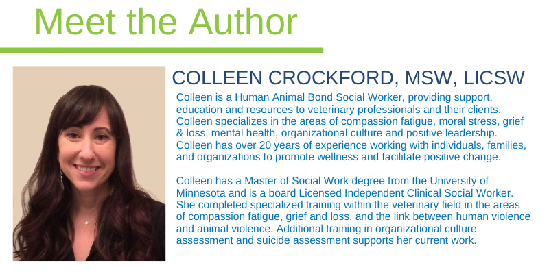 Colleen Crockford, MSW, LICSW
