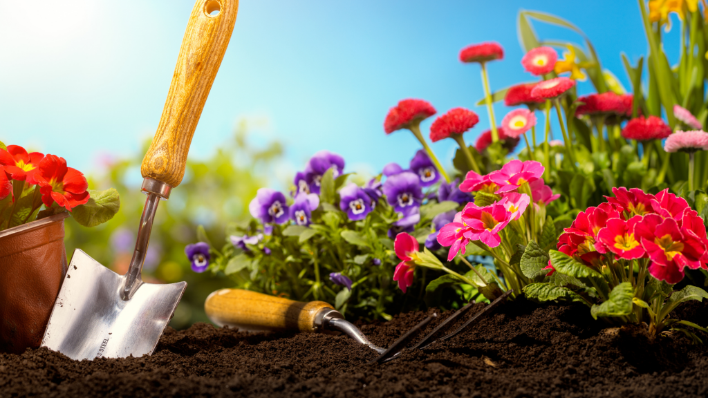 flowers, gardening tools, gardening safety for pet owners, gardening toxins for pets, pet toxins, pet toxins in the garden, pet hazards in the garden, garden safety for pets, Animal Emergency & Referral Center of Minnesota, Twin Cities emergency vet, Oakdale emergency vet, St. Paul emergency vet, spring pet toxins, spring pet hazards